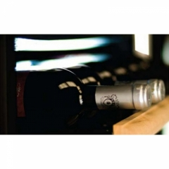 Винный шкаф IP Industrie C 301 X